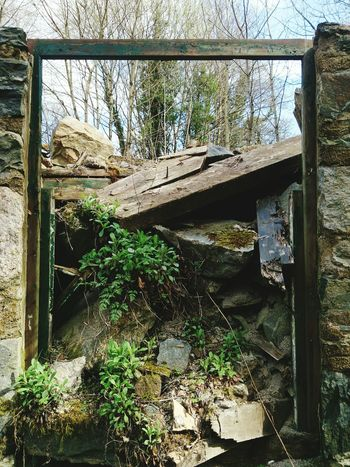 Old house, Blairgowrie - 19.04.2015 Blairgowrie Ruin Ruins House Scotland 2015
