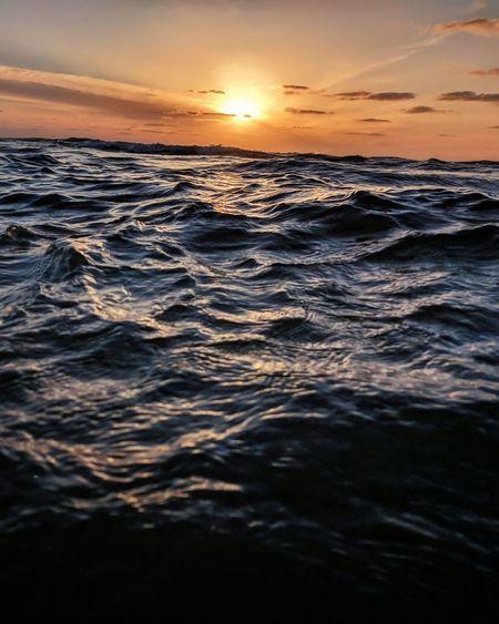 Wild Waves ..
