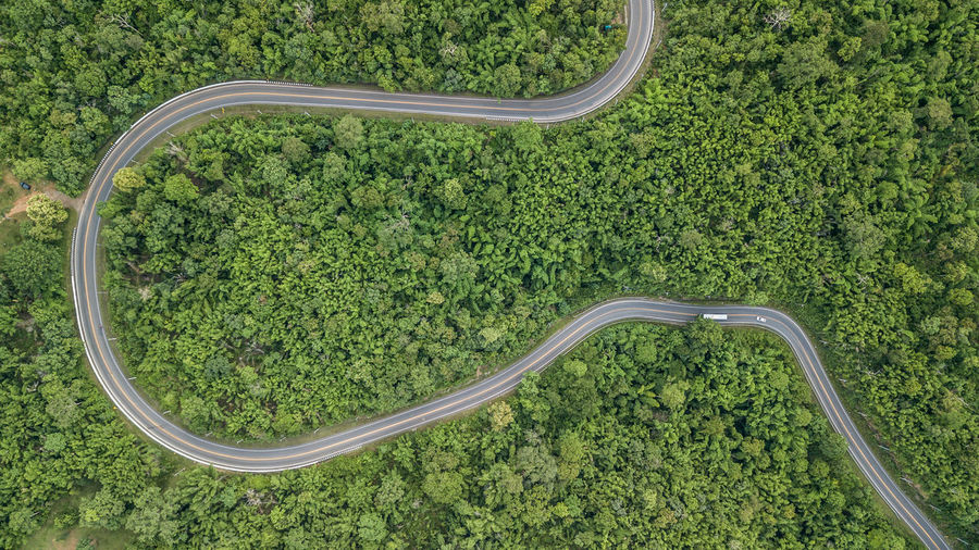 Plant Green Color Tree Growth Curve High Angle View Aerial View Road Beauty In Nature Nature Environment Landscape Day Transportation No People Scenics - Nature Land Forest Tranquility Outdoors Above