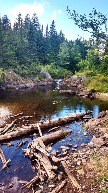 Nature Outdoors Water The Week On EyeEm Quiet Places New Brunswick, Canada Places You Must To See