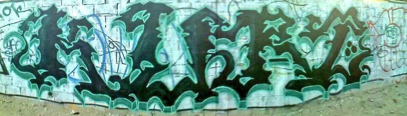 Just writing my name. Graffiti Street Art California Nature