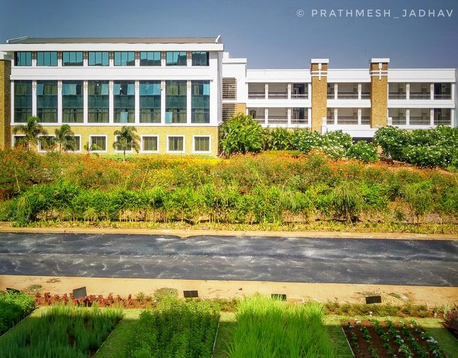College Campus❤️🔥🤗 Like4like Followme College City Politics And Government Modern Architecture Building Exterior Grass Built Structure Sky Plant Blooming Plant Life Branch Streaming Barbed Wire Growing