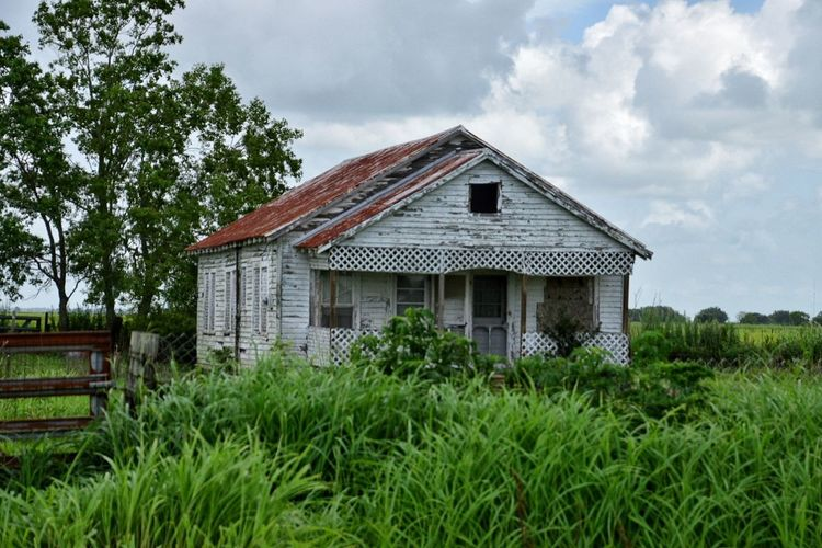 Little house House Grass Building Exterior Architecture Built Structure Cloud - Sky Abandoned No People Wood - Material Tree Outdoors Rural Scene Sky Day Residential Building Barn Landscape Farmhouse Rustic South Louisiana Farmhouse Abandoned Buildings Deterioration Neglected Architecture Rustic Style