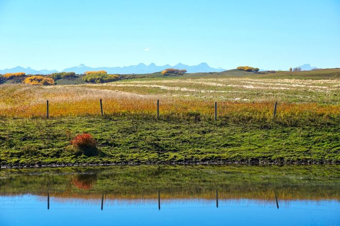 Reflection of colourful Autumn farmland in standing water Autumn Beauty In Nature Calm Clear Sky Copy Space Day Fall Colors, Farm Growth Landscape Mountain Mountain Range Nature No People Outdoors Prairie Reflection Remote Rural Scene Scenics Sky Symmetry Tranquil Scene Tranquility Water