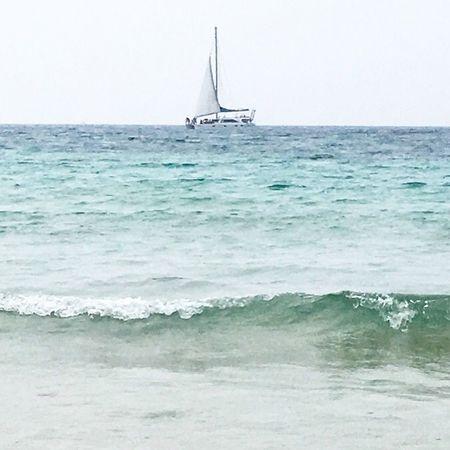 Jejuisland in Korea Catamaran Sailing