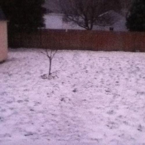 When Did Start Snowing ?!?!?! ha snow woo 