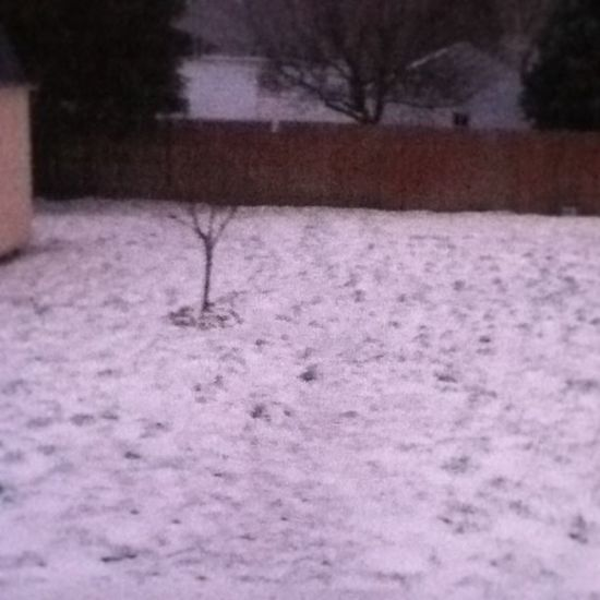 When Did Start Snowing ?!?!?! ha snow woo 