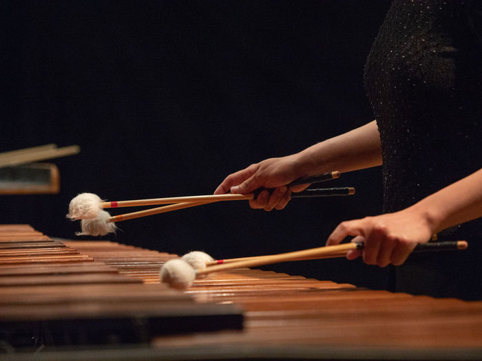 Cropped image of woman playing musical instrument
