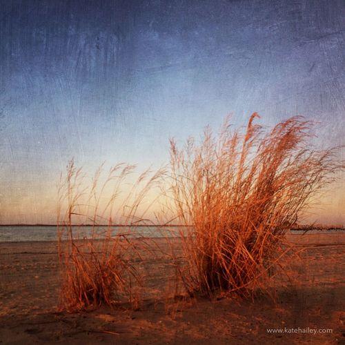 Biloxi Beach. iPhone5s   Mextures Mextures Kateontheroad Traveling