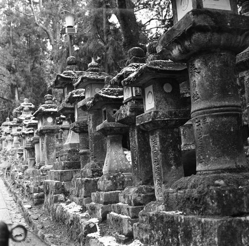 Analogue Photography Film Japan Japan Photography Japanese Culture Japanese Temple Lighting Equipment Lights Traditional Culture Analog Black And White Blackandwhite Blackandwhite Photography Film Photography Filmcamera Filmisnotdead Hasselblad Lamp Lamps Monochrome Temple Temple - Building Temple Architecture Traditional Traditional Architecture