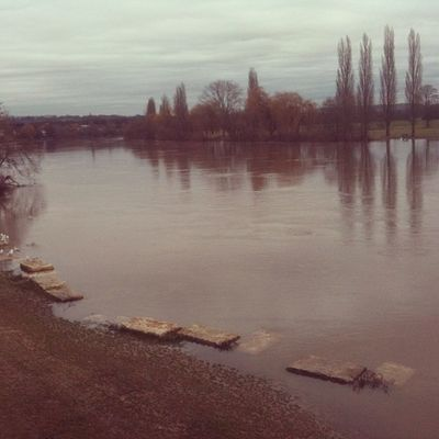 Mainufer #igersfrankfurt #mainufer #river #main #fechenheim Country Photooftheday Best  Main Instamood Bestoftheday Fluss Instagood River Instadaily Rain Instalike Winter Igersffm Autumn Fechenheim Cloud Photoofthemonth Stone Igersfrankfurt Cloudy Dailygram Like Mainufer