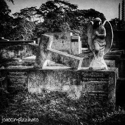 Foto_blackwhite Aj_graveyard Graveyard_dead Tv_churchandgraves Church_masters Masters_of_darkness Fa_sacral Jj_urbex Vivoartesacra Grave_gallery Kings_gothic Obscure_of_our_world Talking_statues Igw_gothika Dark_captures The_great_gothic_world Darkness Voodoo_society Igw_sepulcrum Dismal_disciples Foto_blackwhite Ig_contrast_bnw Amateurs_bnw Bnwmood Bnw_kings bnw_planet bnw_captures top_bnw bnw_lombardia top_bnw_photo bnw_life_shots