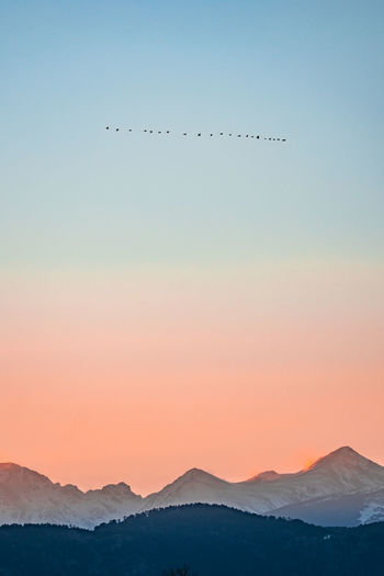 Colorado Boulder Nature Sky Beauty In Nature Mountain Vertebrate Bird Flying Animal Scenics - Nature Animal Themes Tranquil Scene Tranquility Animals In The Wild Clear Sky Animal Wildlife Group Of Animals No People Sunset Silhouette Idyllic Mountain Range Flock Of Birds Outdoors