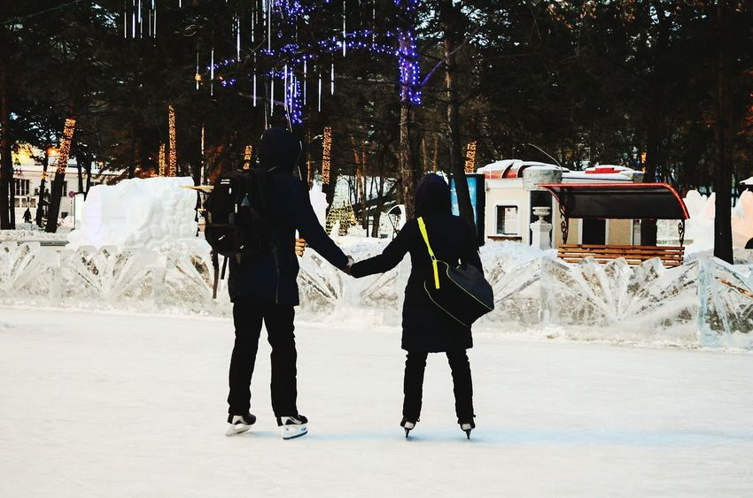 Winter Two People Cold Temperature Snow Winter Sport Christmas Adults Only Christmas Tree Togetherness Tree People Ice-skating Adult Ice Skate Outdoors Human Body Part Day