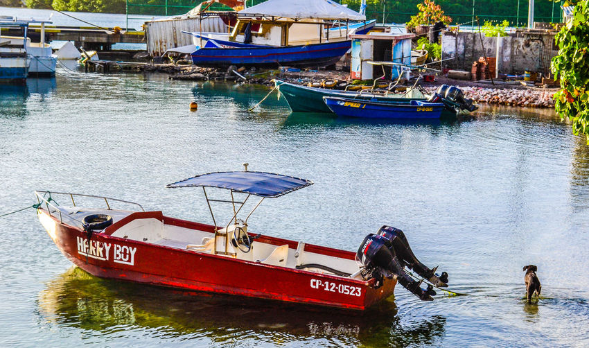 View of red speedboat in water