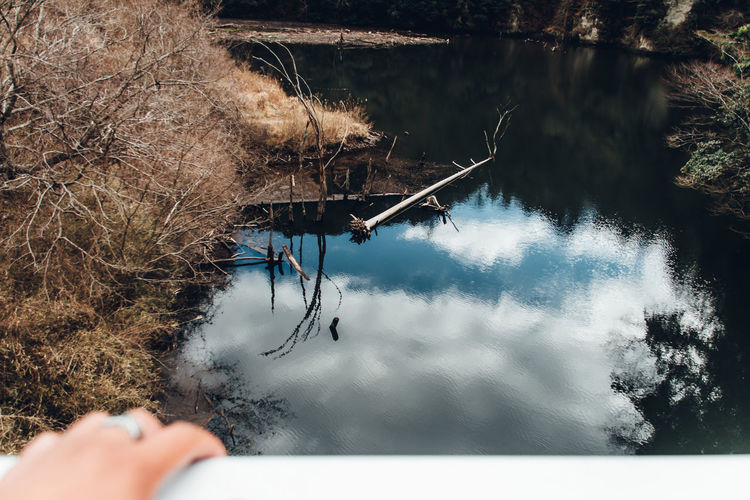 Landscape Japan Exploring Lake River Reflection Tree Travel Travel Destinations POV Personal Perspective Photographer Travelling Tranquility Calm Man Independence Abstract People Sky And Clouds Winter Autumn Fragility Atmospheric Mood Real People Day Nature One Person Water Cold Temperature Plant Snow Outdoors Lifestyles Holding Leisure Activity Beauty In Nature My Best Photo