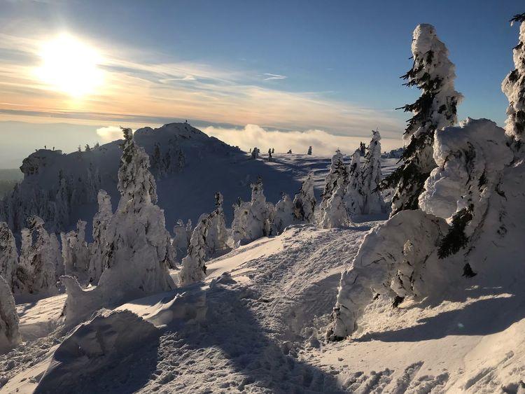 Bayerischer Wald Winter Sky Cold Temperature Winter Snow Sunlight Beauty In Nature Scenics - Nature Mountain