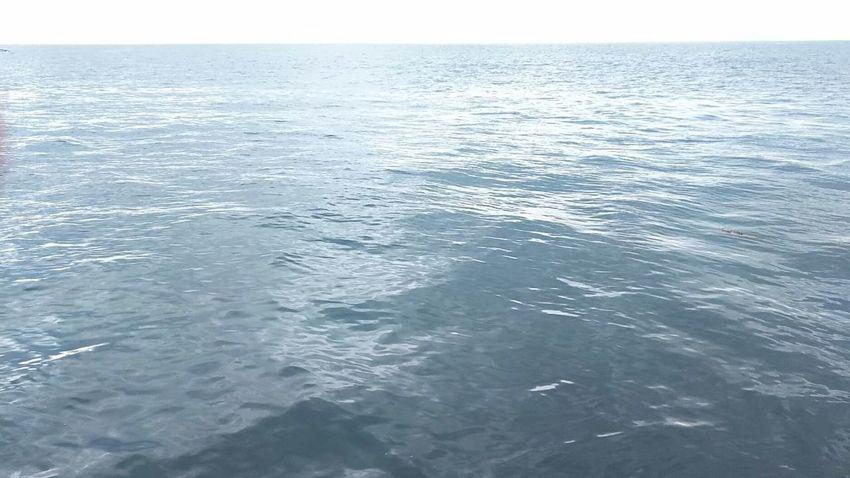Waves Ocean Nature Landscape 2018 玄界灘 Sea Water Horizon Over Water