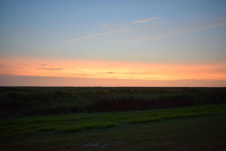 einfach nur schön Sunset_collection Watt Landscape Landscapes Sky Skyporn Sunset Sunsets Wattenmeer