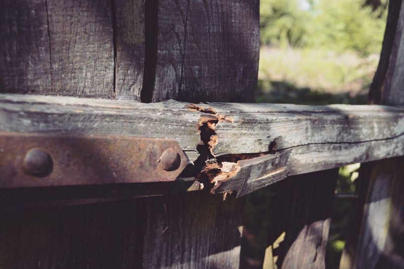 Close-up of rusty metal on broken wooden door