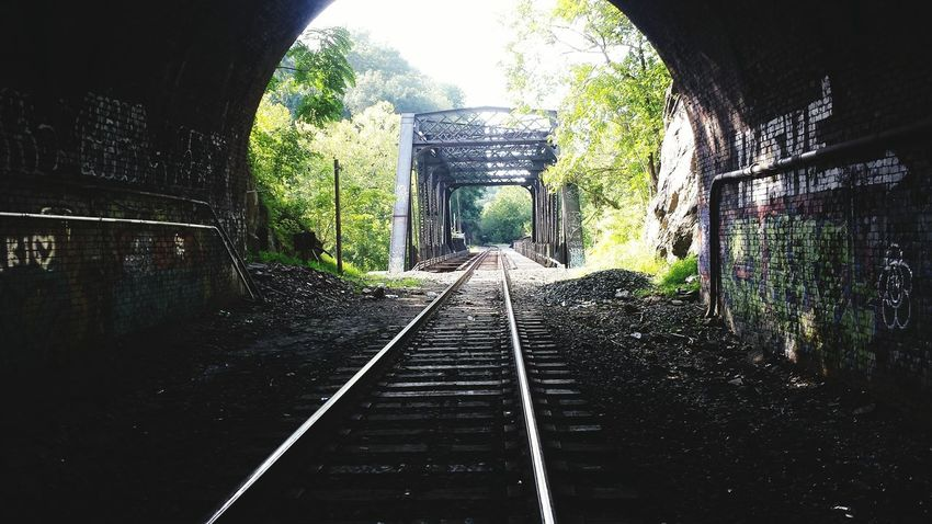 The Way Forward Railroad Track Tunnel Diminishing Perspective Light At The End Of Tunnel Narrow Architecture The Way Forward Built Structure Tree Architecture Railroad Track Long Tunnel Walkway Steps Green Color Diminishing Perspective Day Arch Growth Sky Straight Narrow Weathered