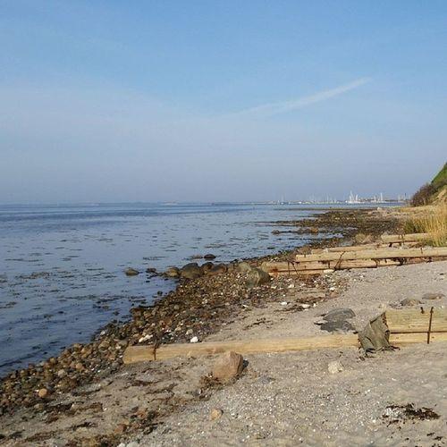 Strand- og bakkeløb. Ingen dårlig start på en smuk dag. Running Spring Behappy Lifeiswhatyoumakeit