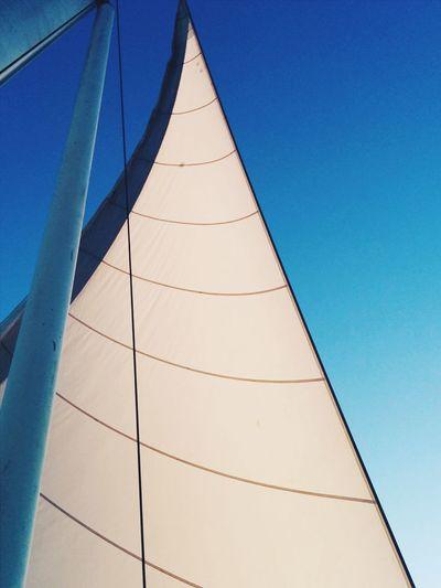 Sailing around Waikiki beach with friends! Sailing Sail Sail Boat Sail Away Sailing Boat Going Sailing Ocean Sea Blue Sky Sky And Sea