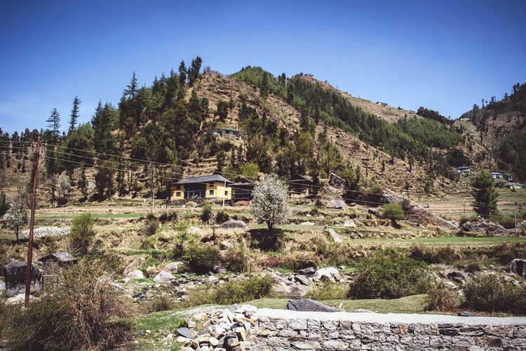 Himalayan Village..!!! Mountain View Mountainranges No People Outdoors Day Beauty In Nature Landscape Sky Scenics Mountain Nature Himchalpradesh Himalayas Himachalpradesh Beauty In Nature Travel Nature Highaltitude Check This Out Peace India EyeEm Best Shots Solitude Tree Mountain Range