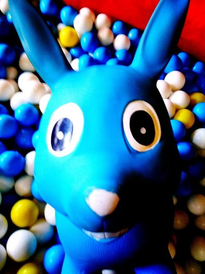 animal toy Full Colour Animal Toy Toy Blue Multi Colored Blue Close-up