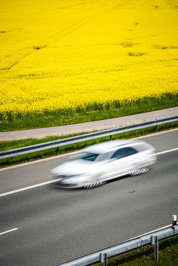 White car on the road passing next to yellow flowering rapeseed fields in spring Transportation Yellow Road Motion Mode Of Transportation Blurred Motion Car Motor Vehicle Plant No People Nature Day Land Vehicle on the move Flower Speed Landscape Environment Travel Field Outdoors