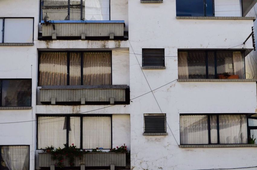 Building Exterior Window Residential Building Capture The Moment Reality In The Street Perspective