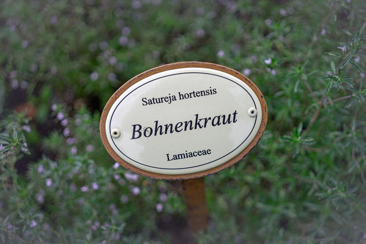 Bohnenkraut Schild Garten Gemüse Text Communication Western Script Sign Plant Close-up Day No People Focus On Foreground Information Geometric Shape Circle Nature Directly Above Shape Guidance Outdoors Capital Letter Information Sign Non-western Script Message