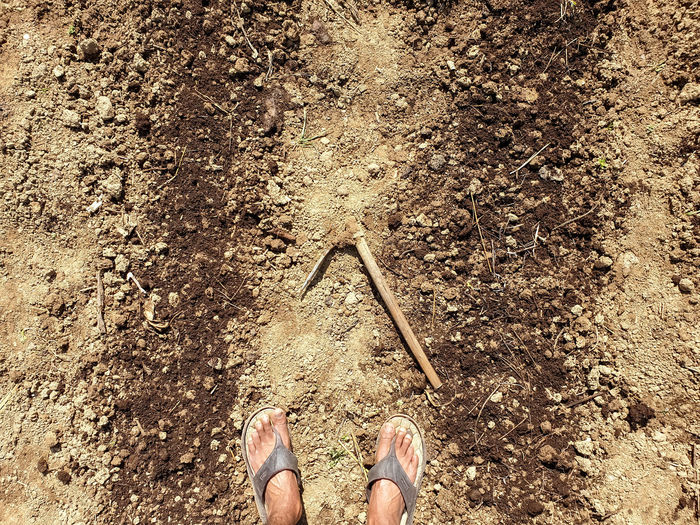 Low section of person standing on mud
