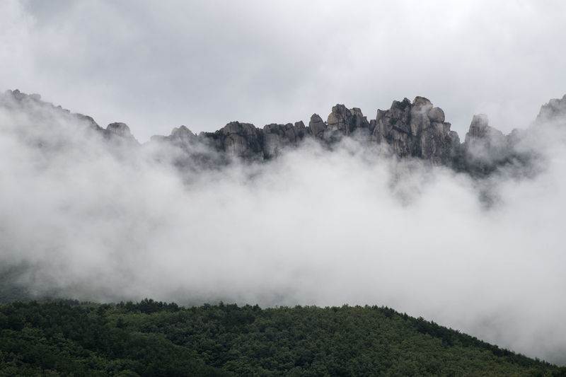 cloudy Ulsanbawi at Seolak Mountain in Gangwondo, South Korea Gangwondo Seolak Mountain Beauty In Nature Cloud - Sky Day Environment Fog Forest Land Landscape Mountain Nature No People Non-urban Scene Outdoors Plant Pollution Scenics - Nature Sky Tranquil Scene Tranquility Tree Ulsanbawi