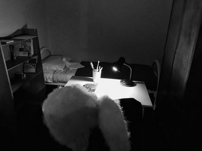 In my Room To Fly New Year's Resolution 2018 Wings Indoors  Home Interior Table No People Illuminated Close-up EyeEm Ready