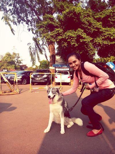 I'm a moeslim, but honestly I loved this dog. Latepost Afterworkout enjoying life Walking Around Husky ♡