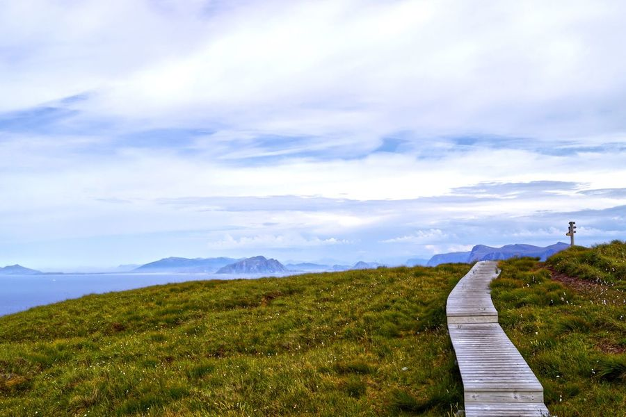 Cotton grass, wooden walkway, purple mountains from the sea Clouds And Sky Runde Allesund Grassy Hillside Purple Mountains Islands Signpost Wooden Walkway Walkway Cloud - Sky Scenics - Nature Sky Beauty In Nature Tranquility Tranquil Scene Plant Landscape Grass Environment Nature Land Footpath Field