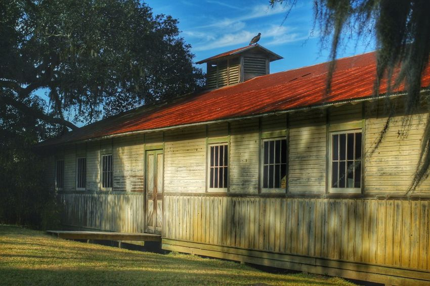 Avery Island Louisiana Architecture Building Exterior Built Structure No People Sky Outdoors Avery Island Louisiana Bird