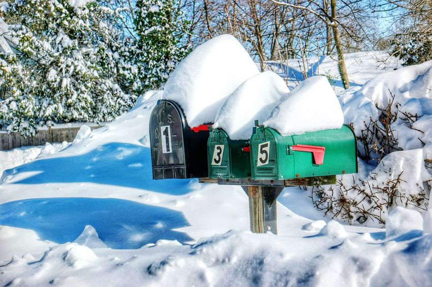 Blizzard 2016 Mailboxes Snow ❄ Cold Winter ❄⛄ Snow Trees