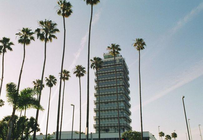 America Close Up E3 Los Angeles, California Los Ángeles Mood Captures Nisute Europe Shigeru Miyamoto USA