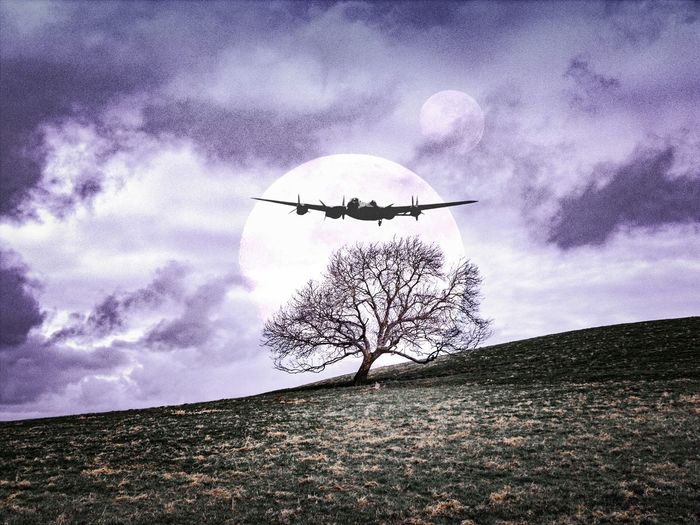 on the wings of imagination Wales Dramatic Sky Violet Purple Dusk Plane Airplane Collage Fantasy Science Fiction Binary Sunset Solo Tree  Mauve Colour Grassland Airplanes Double Exposure Uk Imagination Flying WWII Airshow самолет солнца дерево