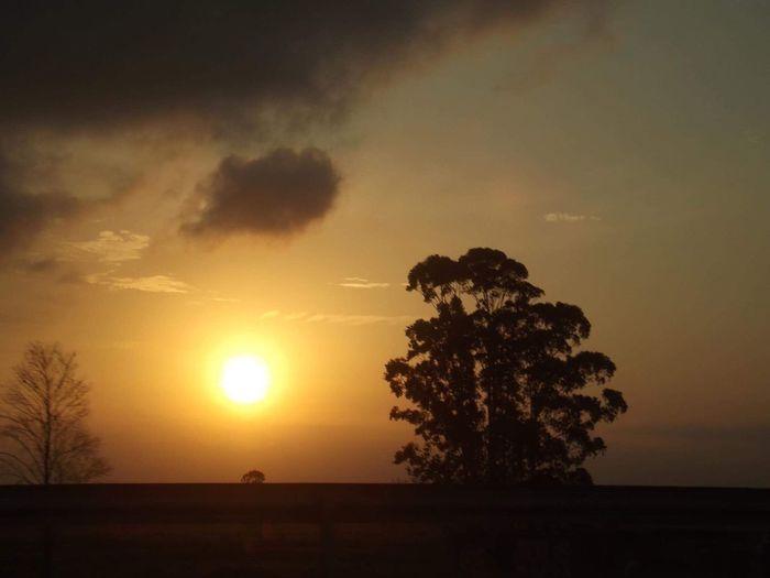 Fim do dia - no filter First Eyeem Photo Sun Day Dayoff Professionalphotography Sunset
