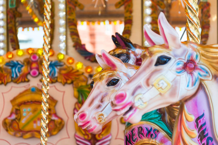 Horses on a fun fair merry go round carousel Retro Amusement Park Amusement Park Ride Animal Representation Arts Culture And Entertainment Carousel Carousel Horse Carousel Horses Close-up Colorful Horse Merry Go Round No People Old Vintage