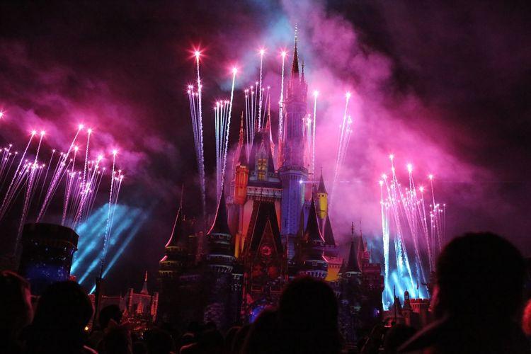 Night Beautiful Event Rear View My Year My View Disneyland Disney 2016