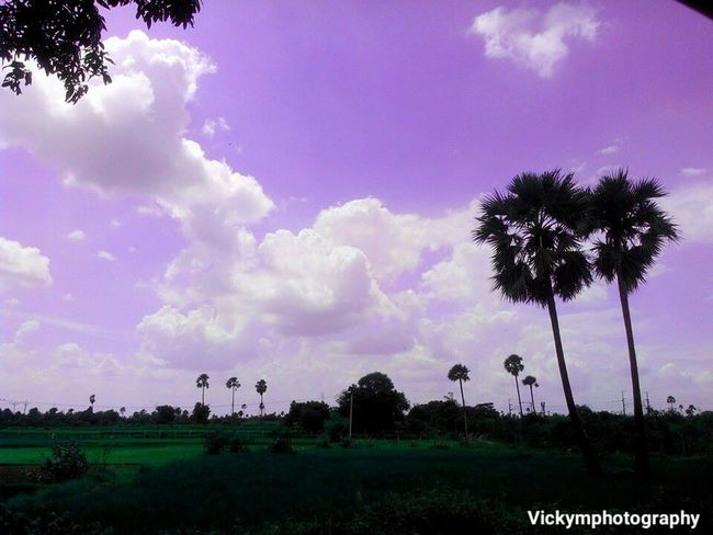 Sky Sky And Clouds Landscape Scenics Countryside Nature Purplesky Indianvillage India