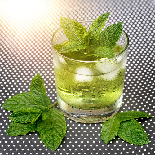 Glass of clear green liquid cooled with ice cubes. mint leaves of the herb morocco mint decorated.
