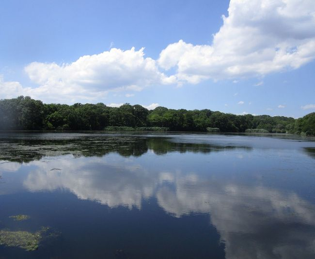 Beauty In Nature Tranquil Scene Outdoors Reflections Water Sky Clouds And trees Scenics No People