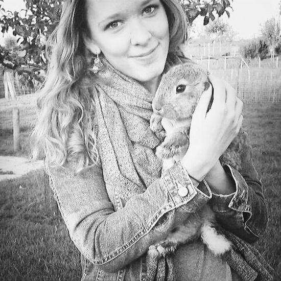 Cute Bunny  Cute Animals