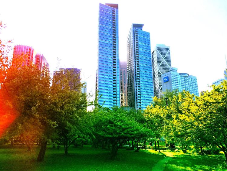 Chicagoparks Nature Photography