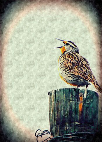 Animal Markings Animal Themes Avian Bird Close-up Day Focus On Foreground Meadowlark Nature No People Outdoors Perching Selective Focus Singing Song Wood - Material Wyoming The Great Outdoors - 2016 EyeEm Awards